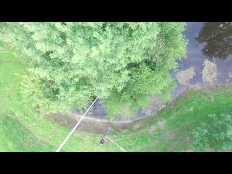 crash  om  drone uit de boom te halen