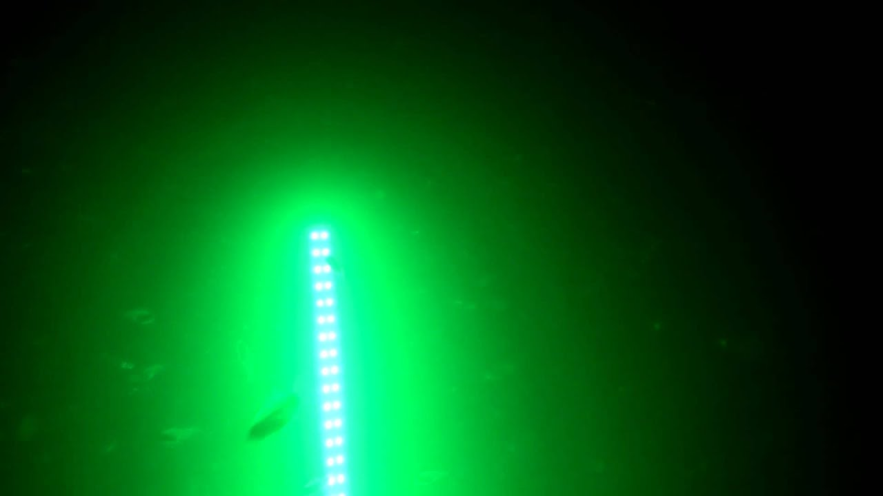 hydro glow fishing lights product test - youtube, Reel Combo