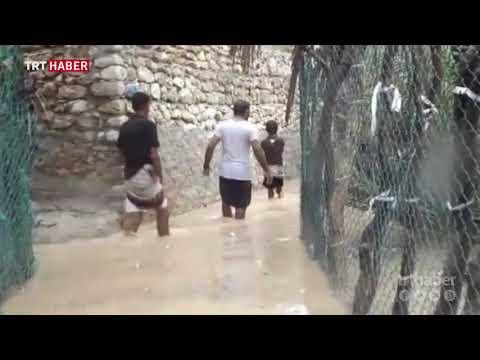 Sokotra Adası kasırga nedeniyle 'felaket bölgesi' ilan edildi