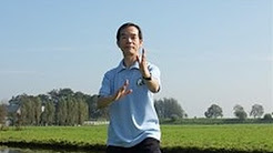 Tai Chi for Back Pain Video | Dr Paul Lam | Introduction