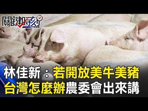 林:如果開放美牛美豬 台灣要怎麼辦 農委會出來講! 關鍵時刻20190116-6 林佳新