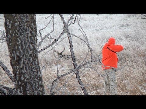 Saskatchewan Whitetail Hunt.