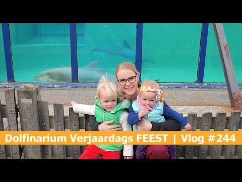DOLFINARIUM VERJAARDAGS FEEST | Bellinga Vlog #244