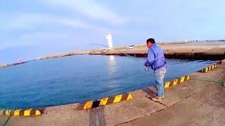 漁港で大物が釣れて竿が折れそうな 釣り人を発見!