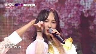 Show Champion EP.267 H.U.B - The Day The Cherry Blossoms Bloom - Stafaband