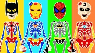 Wrong Heads Skeletons Superheroes Learn Colors For Kids Toddlers Funny Skeletons HooplaKidz Toons