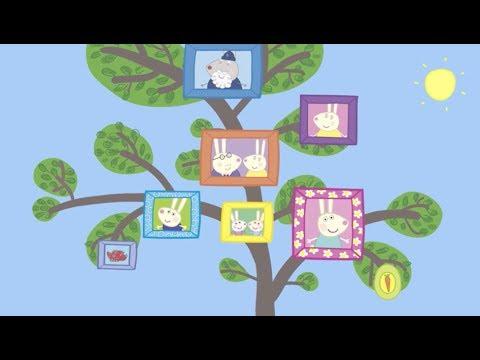 Rabbit Zebra Family Tree Compilation English Episodes New 2017