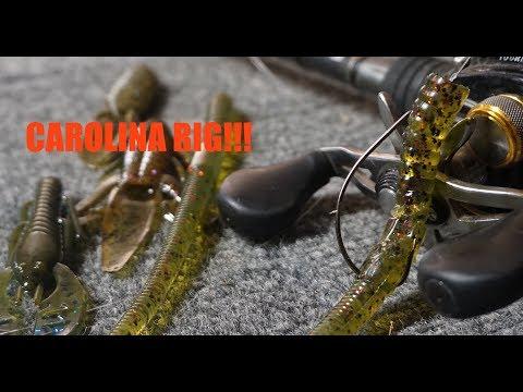 Fishing the Carolina Rig for post spawn Bass!!