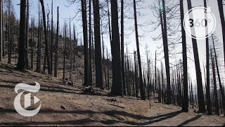 dead before the fire even came through   360 vr video   the new york times