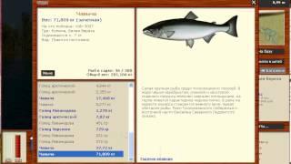 Русская рыбалка 3.8 Чавыча