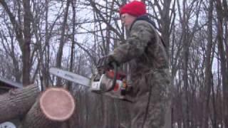 "Stihl ms180 cutting through 12"" ash"