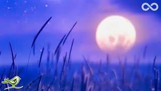 The Eagle • Relaxing Flute Music for Meditation, Yoga & Sleep
