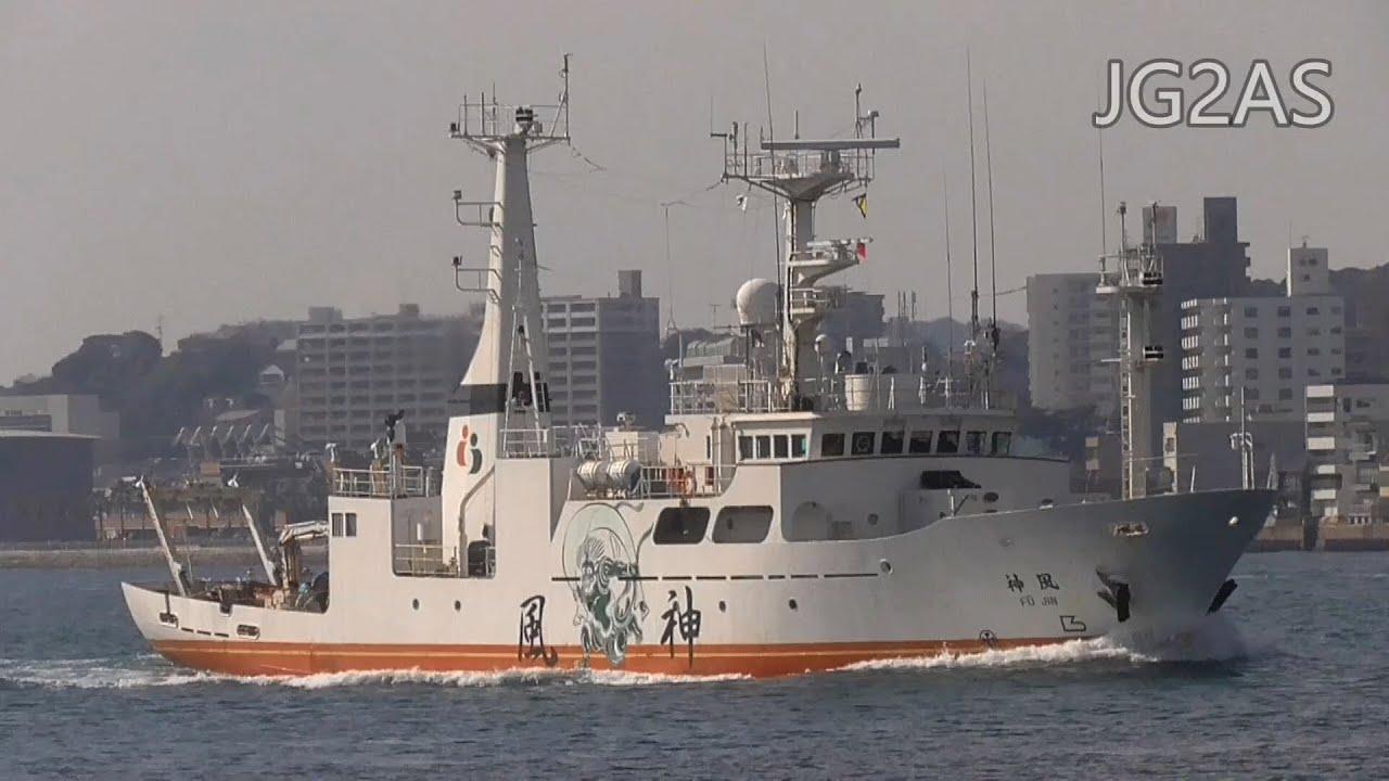 Download 風神 多目的船 近藤海事 MV FUJIN Multipurpose vessel 2019JAN