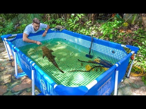 New FISH POOL POND Gets HUGE EXPENSIVE FISH!