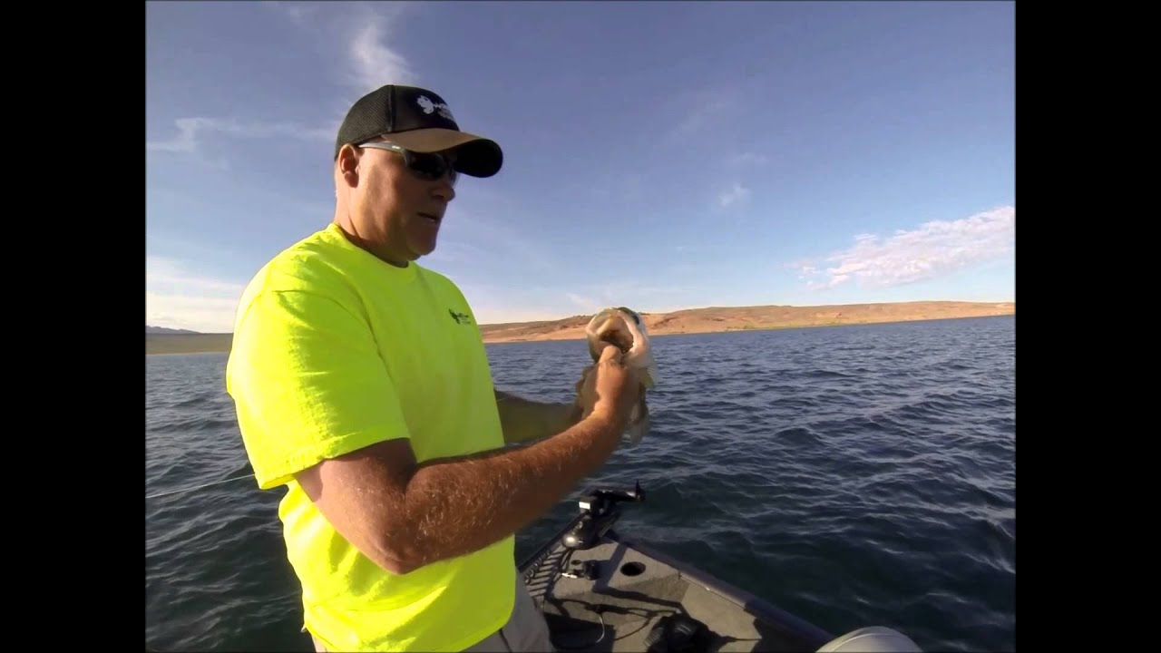 Sand hollow bass fishing 7 28 15 youtube for Sand hollow fishing report