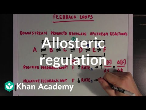 Allosteric regulation and feedback loops | Biomolecules | MCAT | Khan Academy