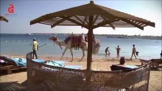 Sunrise Select Royal Makadi Resort, Egypt(, 2016-12-25T15:26:03.000Z)