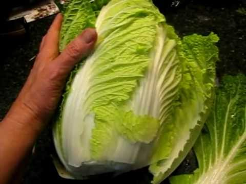 Harvesting Cabbage From My Organic Garden