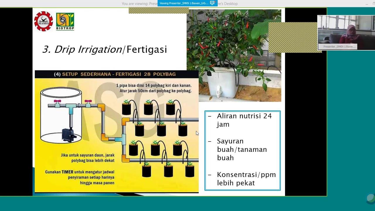 Kamp Kreatif Smk Indonesia Hidroponik