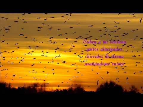 Volar Es Para Pájaros. HILARIO CAMACHO.wmv