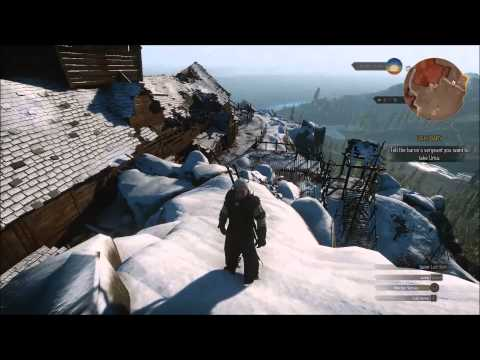 witcher 3 how to get to temple isle