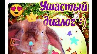 Кролики разговаривают ушами!