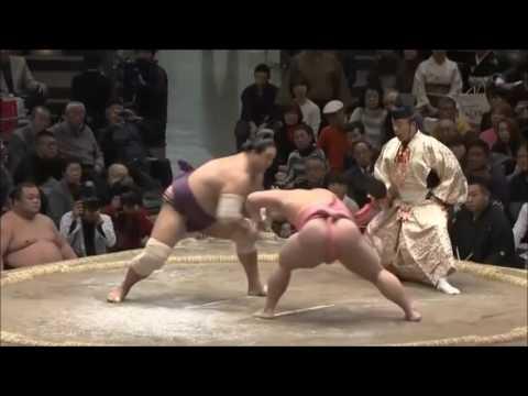 SUMO Jan 2017- Ura All Matches 新十両 宇良 平成29年1月場所 (全)