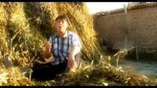 Шергазы Оролов - Жылмайып койчу