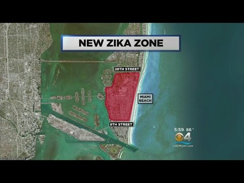 Florida Governor: 5 Cases Of Zika On Miami Beach