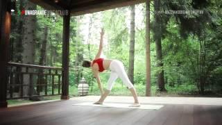 Йога для начинающих бесплатно