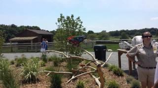 Six Flags Safari Off Road Adventure - (Part 3) - Camp Adventura (Outside)