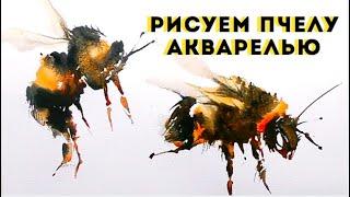 Как нарисовать пчелу акварелью — kalachevaschool.ru — Поэтапный урок с Аней Чайниковой