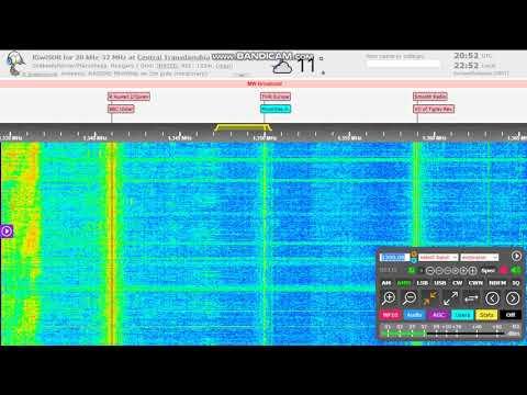 Radio Botswana 1 on 1350 kHz (presumed!)