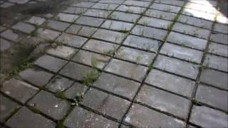 Как не надо укладывать тротуарную плитку(Что бы плитка так не просела, нужно не забывать об основе на которую она будет укладываться., 2016-06-16T18:50:35.000Z)