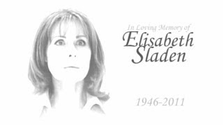 Doctor Who Memorial: Tears for Sarah Jane - by Babelcolour