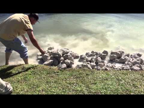 Erosion Control with native rip rap sea wall Naples, FL lake water