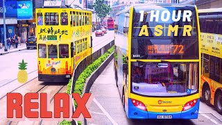 Relaxing Bus Sound [ Shiny Background ] 60 mins (1 Hour ASMR) + Sleep Sounds + anti stressful