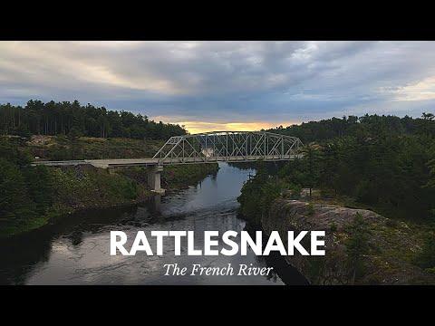 Rattlesnake In Northern Ontario?