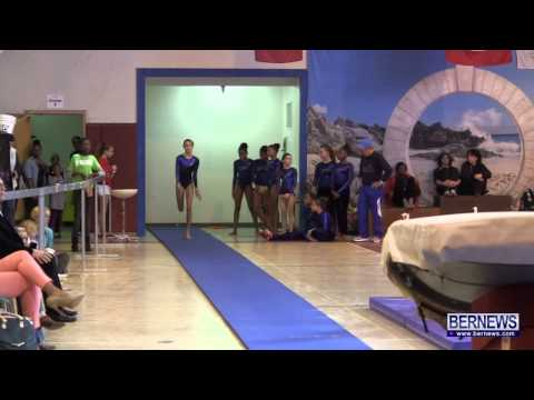 Vault Routines At International Gymnastics Meet Jan 12 2013