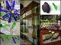 DIY Recycled Wine Bottles Ideas - Wine Bottle Crafts Inspo