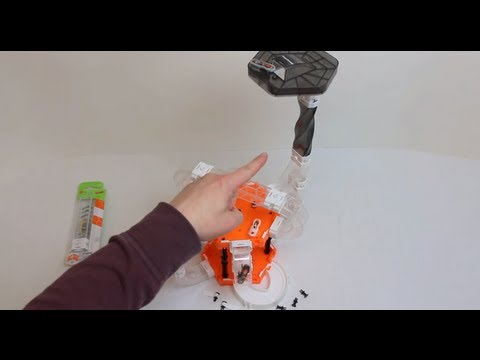 HexBug Nano V2 - Watch Tower set - Sky Max - Crows Nest - Detailed hands on review P/N: 477-2910