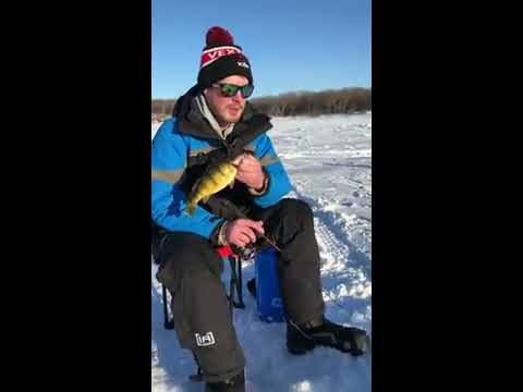 Devils lake fishing report youtube for Devils lake nd fishing report