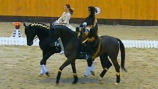 Лошади. Верховая езда. Лошади видео. Красивые лошади