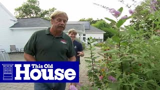 How To Plant A Butterfly Garden | This Old House