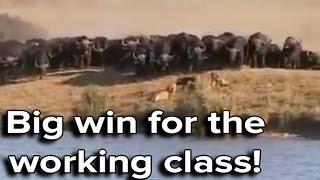 Ozzy Man & Mozza Commentate Battle at Kruger