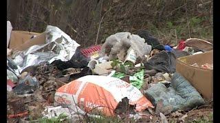 Не подействовало: в Лавском лесу вновь появляются мусорные свалки(В своих выпусках мы неоднократно рассказывали о проблеме Лавского леса. В прошлом на территории массива..., 2016-04-26T15:46:24.000Z)