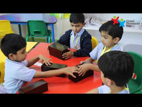Global Montessori Plus