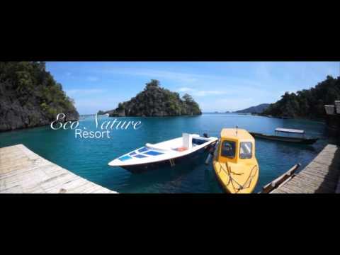Labengki Island Nature Paradise (Update August)