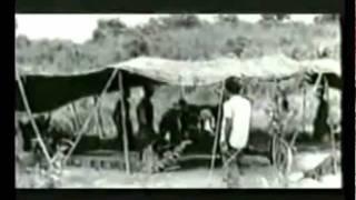 Bangladesh- Shironamhin