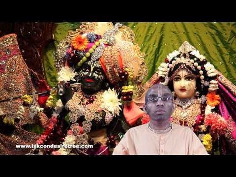 What does our senses are meant for Krishna's satisfaction mean